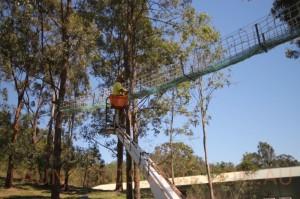 Installing Koala Crossing